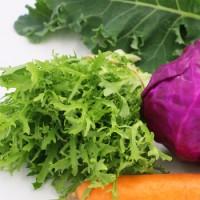 有机榨汁蔬菜组合