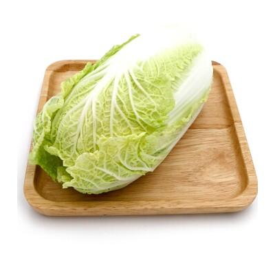 有机大白菜